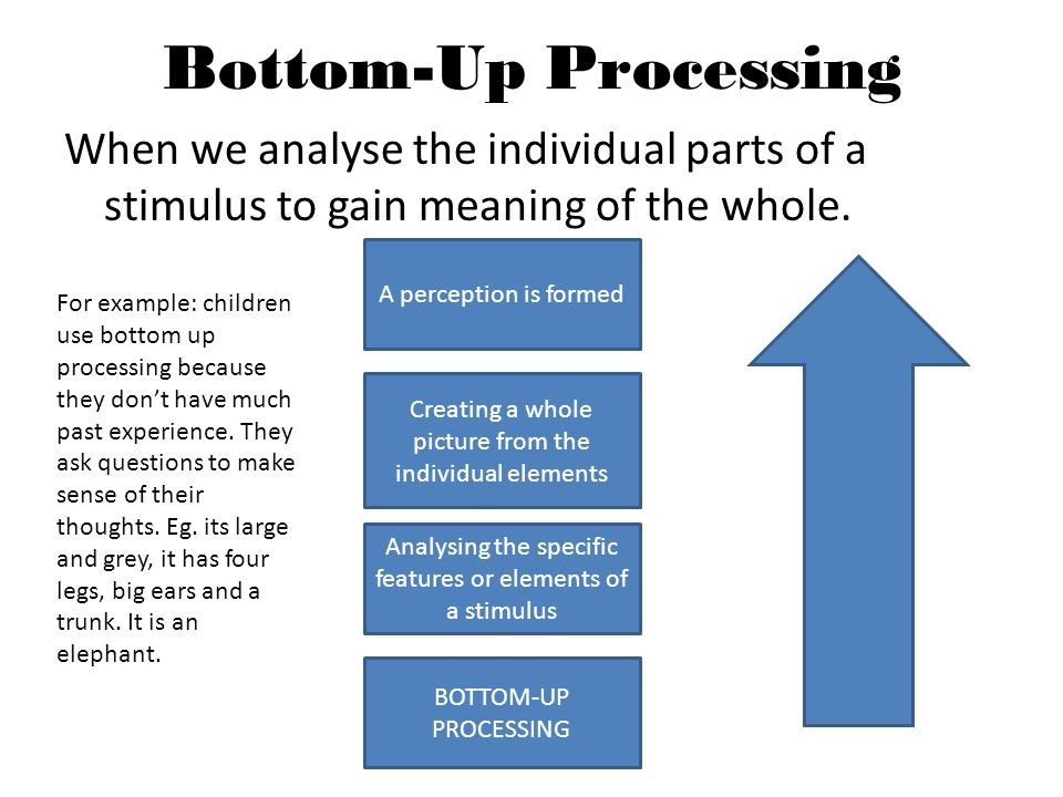 Bottom-Up Processing When we analyse the individual parts of a stimulus to gain meaning of the whole.