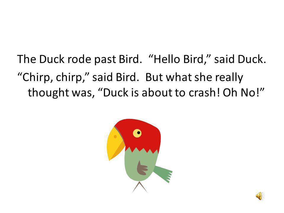 The Duck rode past Bird. Hello Bird, said Duck