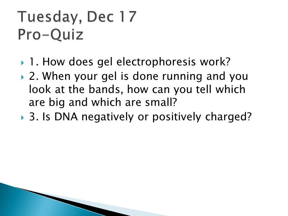 Tuesday, Dec 17 Pro-Quiz 1. How does gel electrophoresis work