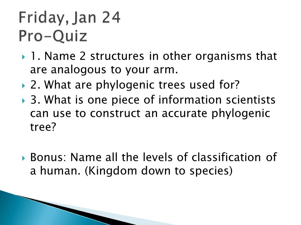 Friday, Jan 24 Pro-Quiz 1. Name 2 structures in other organisms that are analogous to your arm. 2. What are phylogenic trees used for