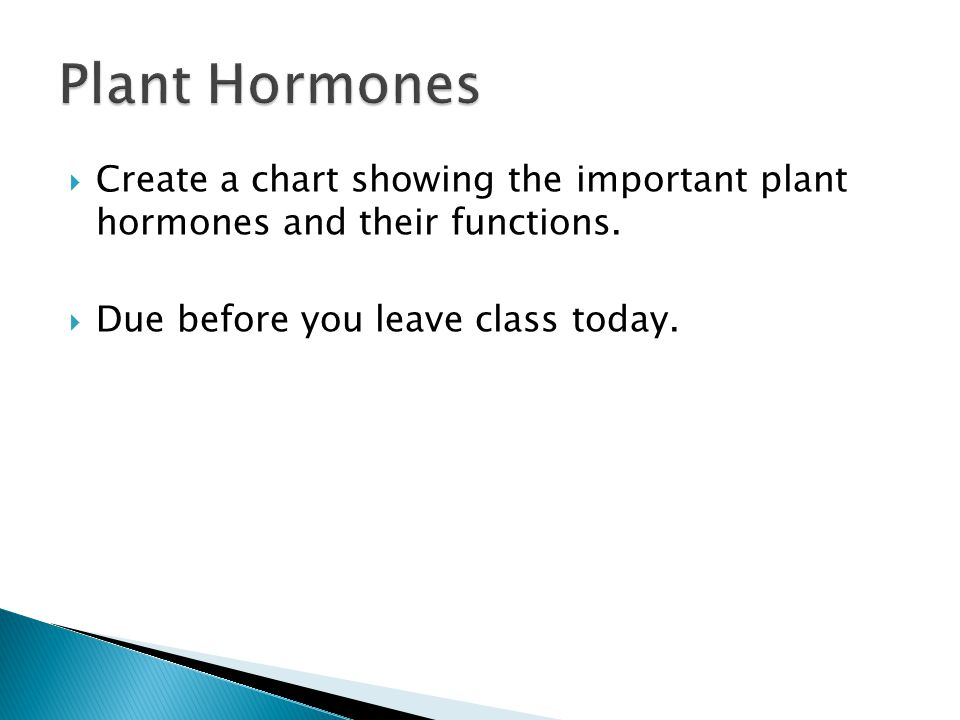 Plant Hormones Create a chart showing the important plant hormones and their functions.