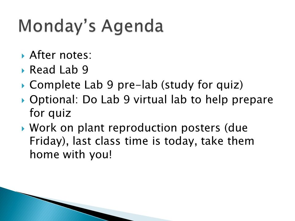 Monday's Agenda After notes: Read Lab 9