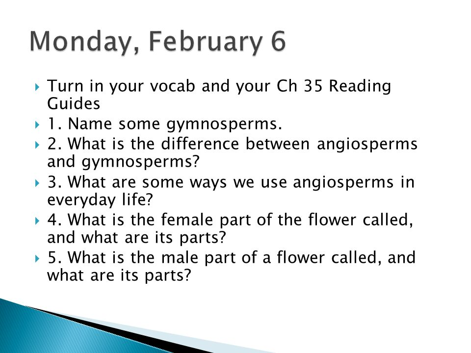 Monday, February 6 Turn in your vocab and your Ch 35 Reading Guides