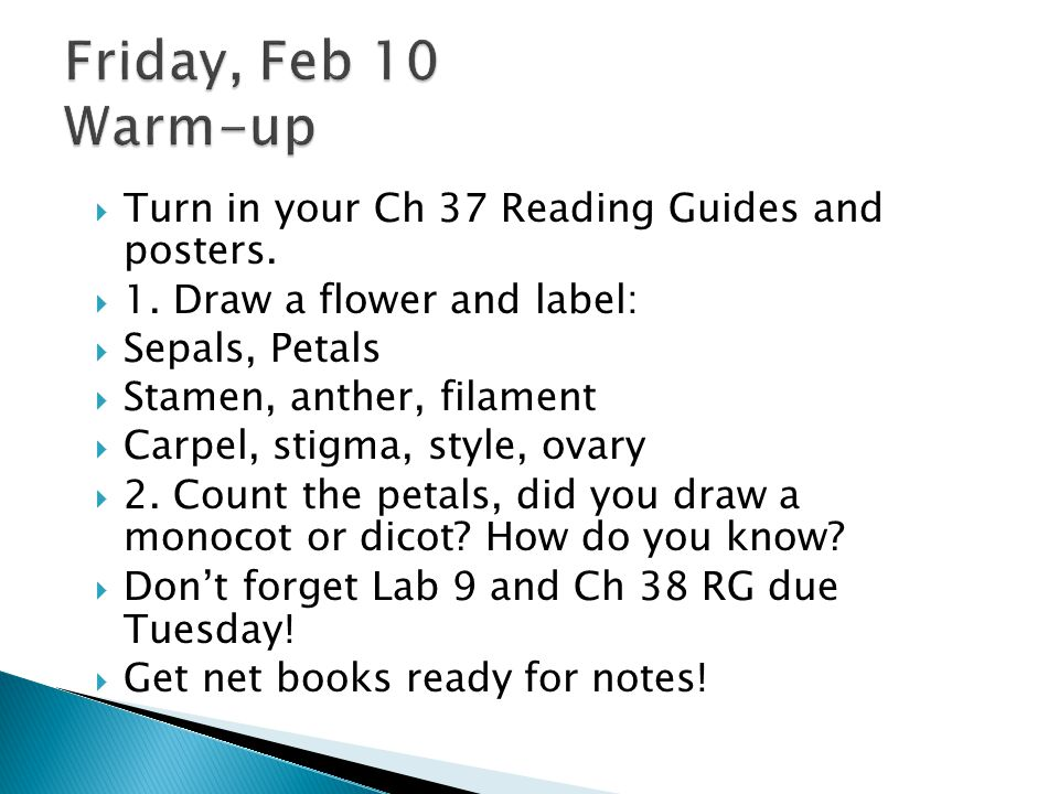 Friday, Feb 10 Warm-up Turn in your Ch 37 Reading Guides and posters.