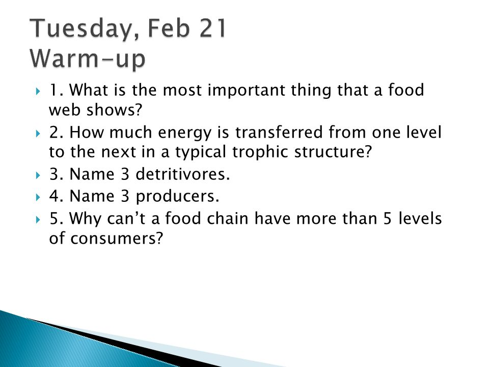 Tuesday, Feb 21 Warm-up 1. What is the most important thing that a food web shows