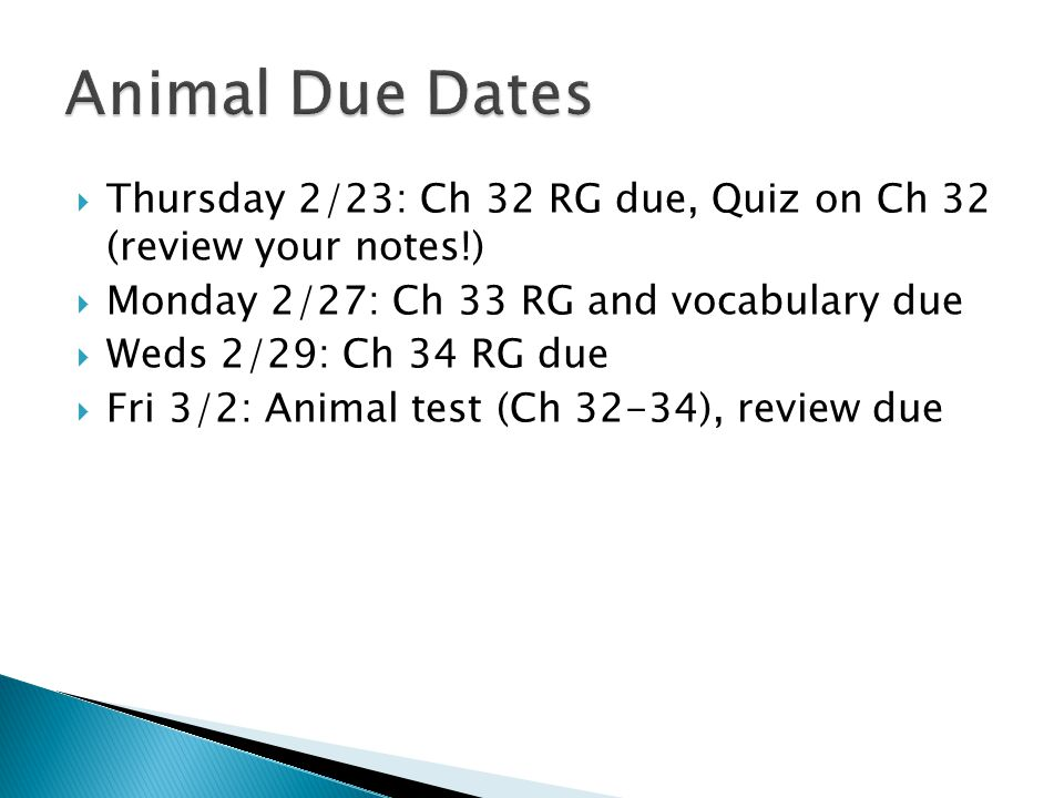 Animal Due Dates Thursday 2/23: Ch 32 RG due, Quiz on Ch 32 (review your notes!) Monday 2/27: Ch 33 RG and vocabulary due.