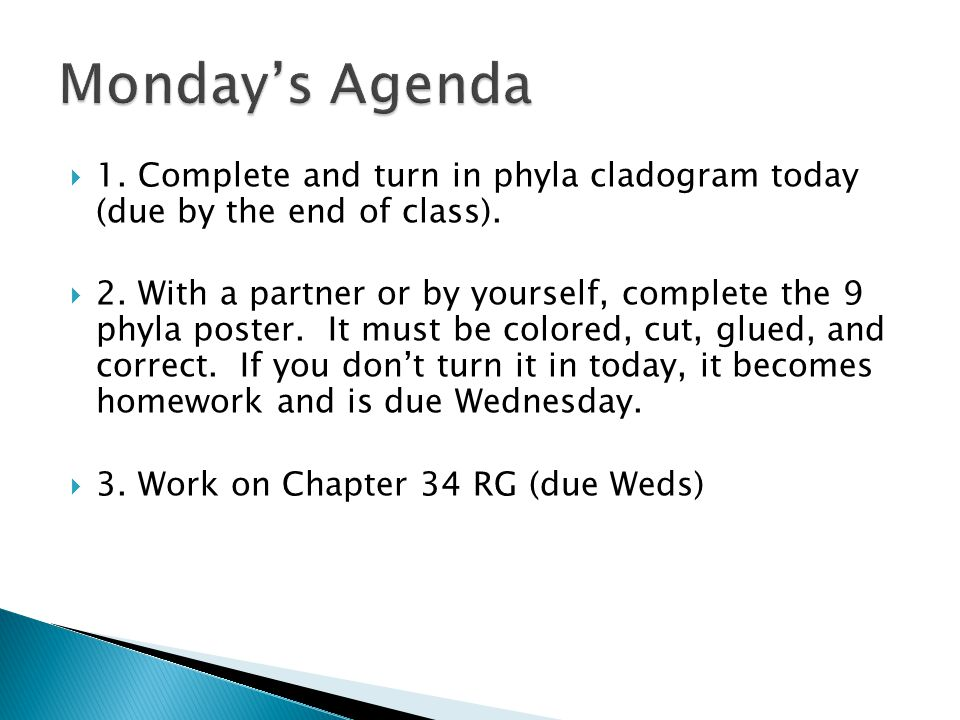 Monday's Agenda 1. Complete and turn in phyla cladogram today (due by the end of class).