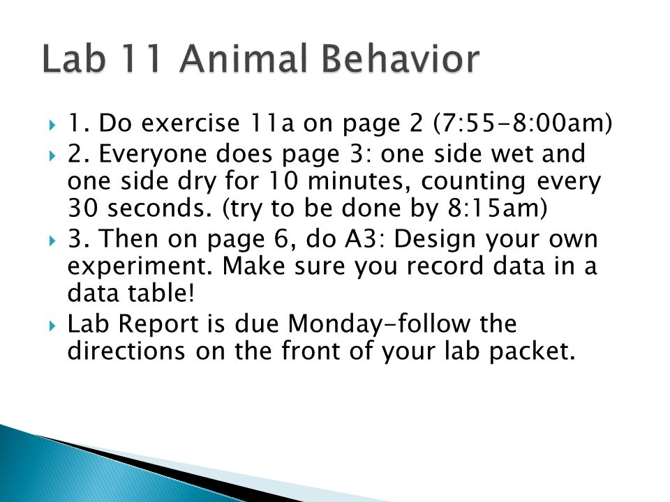 Lab 11 Animal Behavior 1. Do exercise 11a on page 2 (7:55-8:00am)