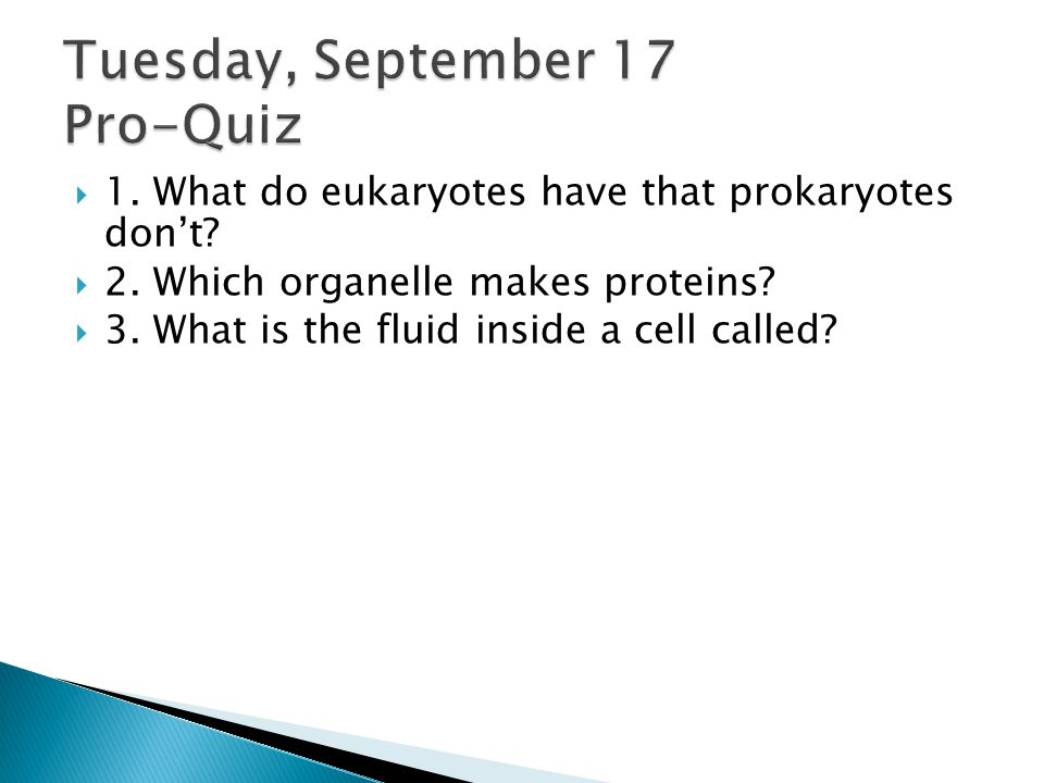 Tuesday, September 17 Pro-Quiz