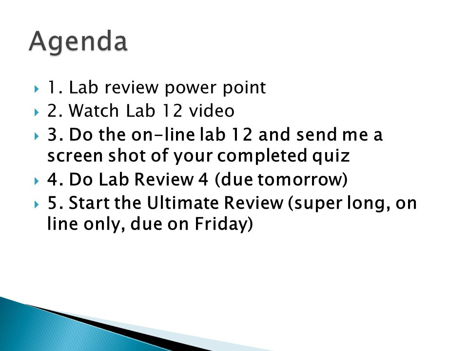 Agenda 1. Lab review power point 2. Watch Lab 12 video