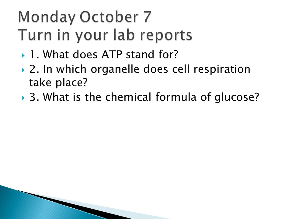 Monday October 7 Turn in your lab reports