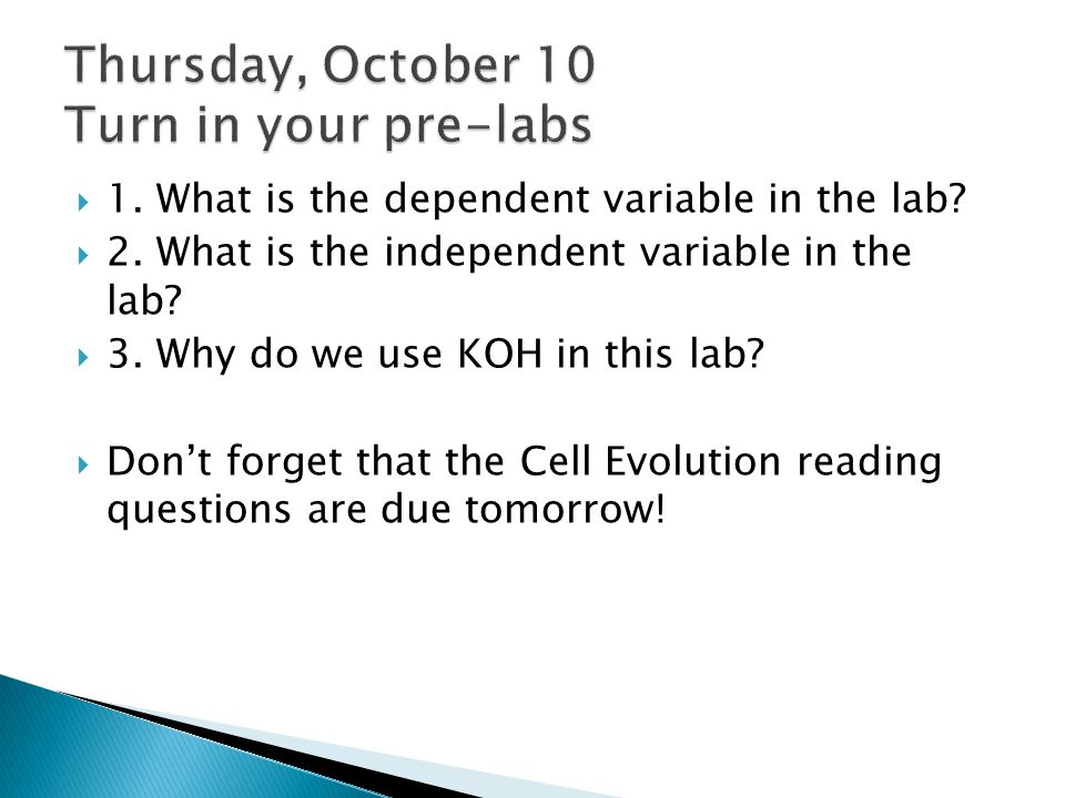 Thursday, October 10 Turn in your pre-labs