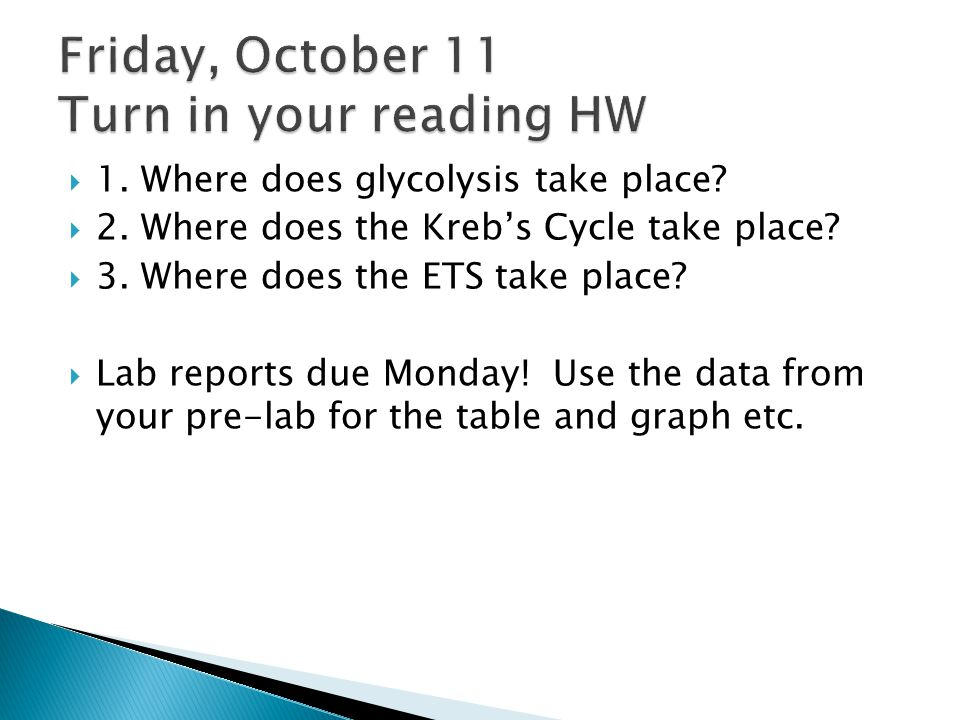 Friday, October 11 Turn in your reading HW