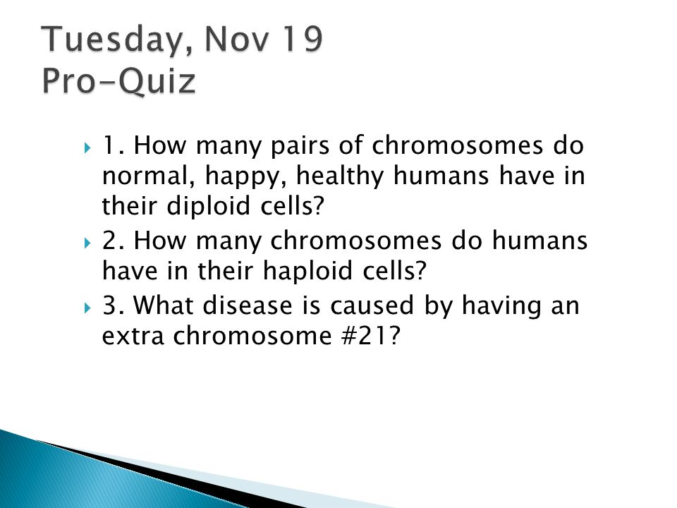 Tuesday, Nov 19 Pro-Quiz 1. How many pairs of chromosomes do normal, happy, healthy humans have in their diploid cells