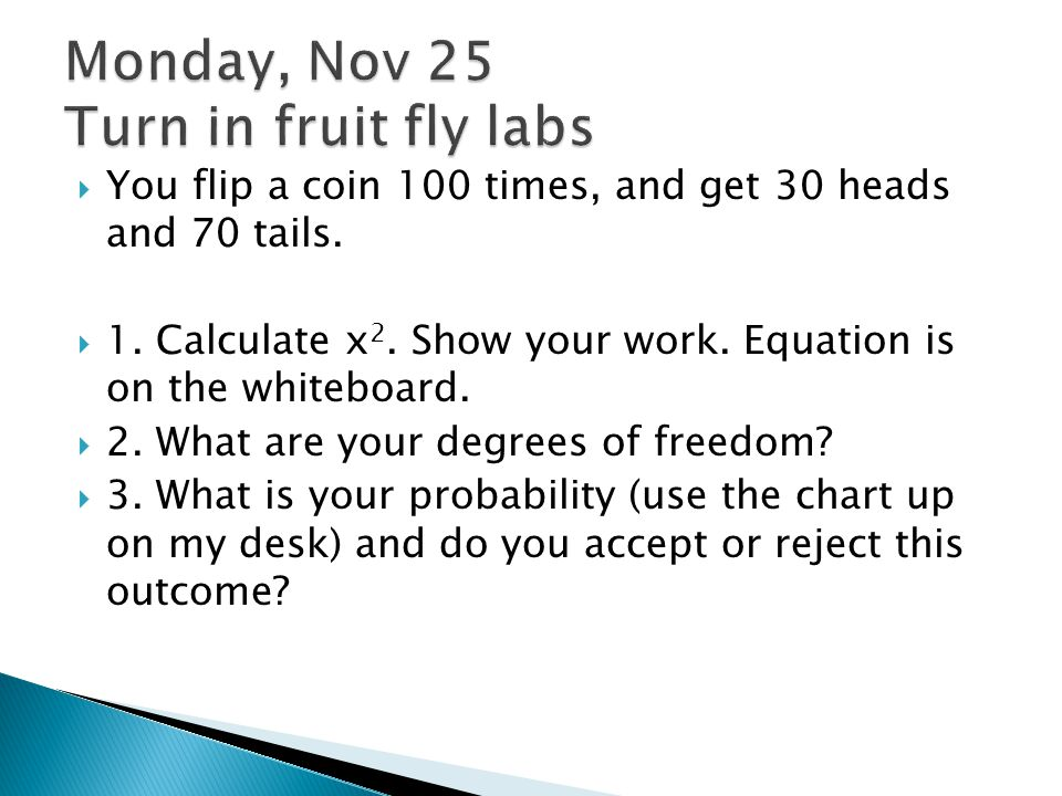 Monday, Nov 25 Turn in fruit fly labs