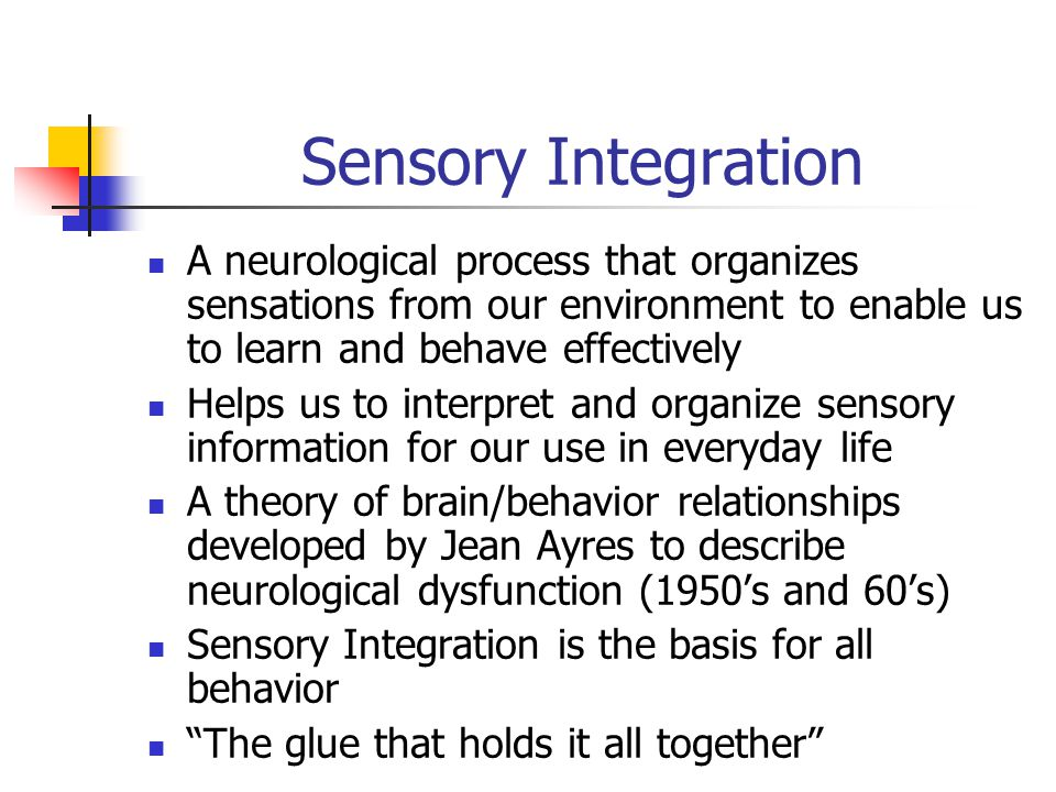 Sensory Integration A neurological process that organizes sensations from our environment to enable us to learn and behave effectively.