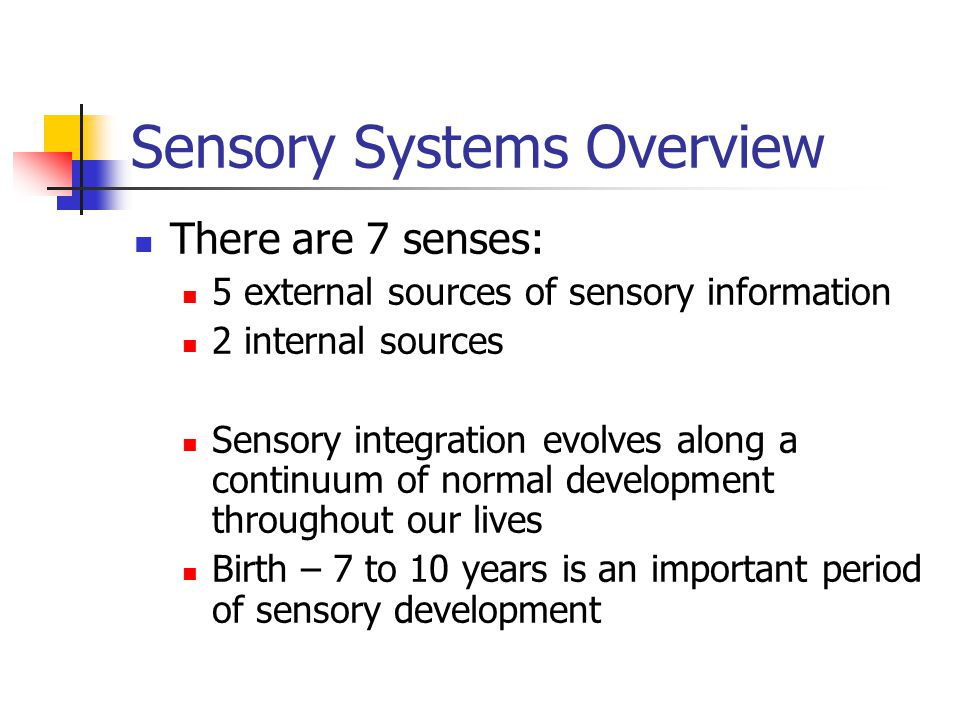 Sensory Systems Overview