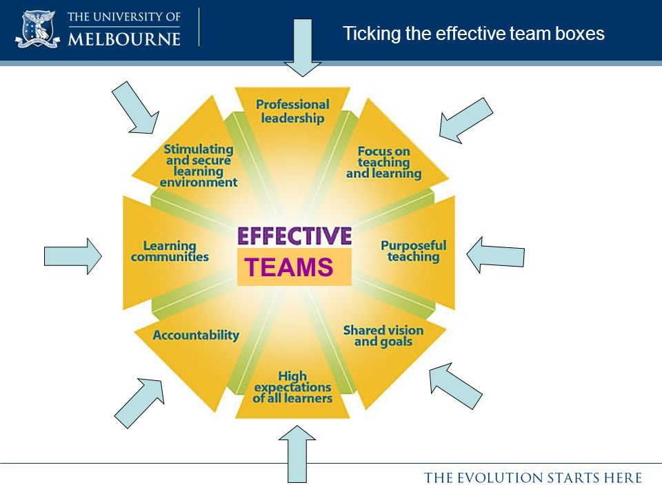 Ticking the effective team boxes