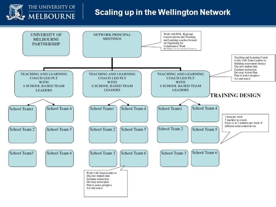 Scaling up in the Wellington Network