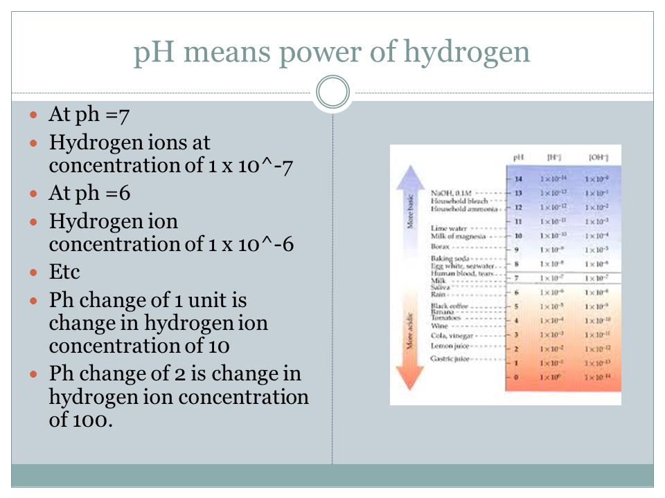 pH means power of hydrogen