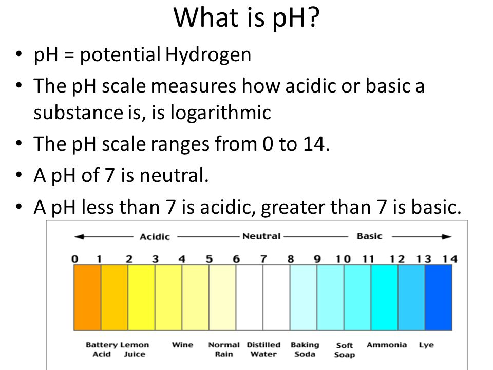 What is pH pH = potential Hydrogen