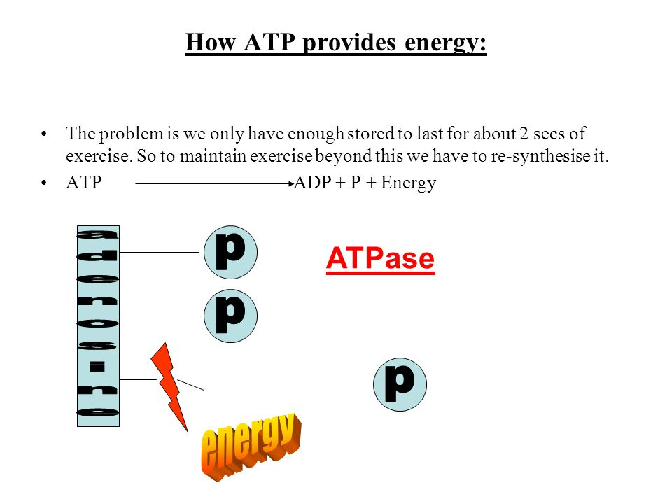 How ATP provides energy:
