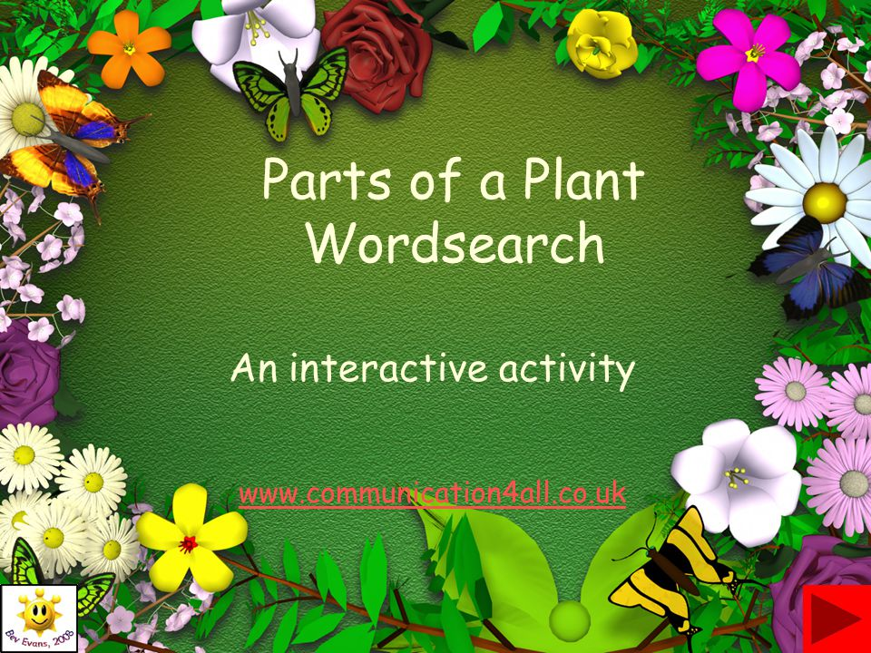Parts of a Plant Wordsearch