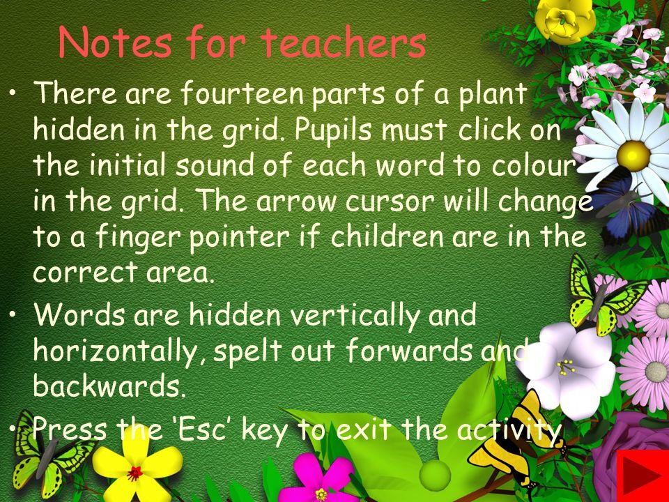 Notes for teachers