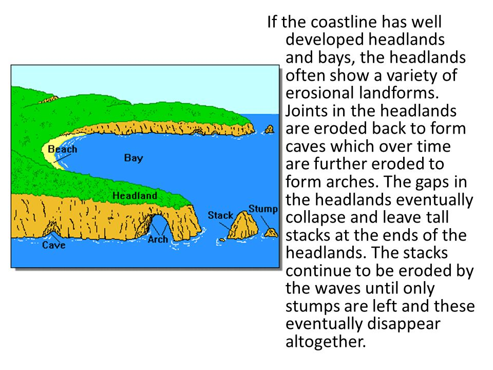 If the coastline has well developed headlands and bays, the headlands often show a variety of erosional landforms.