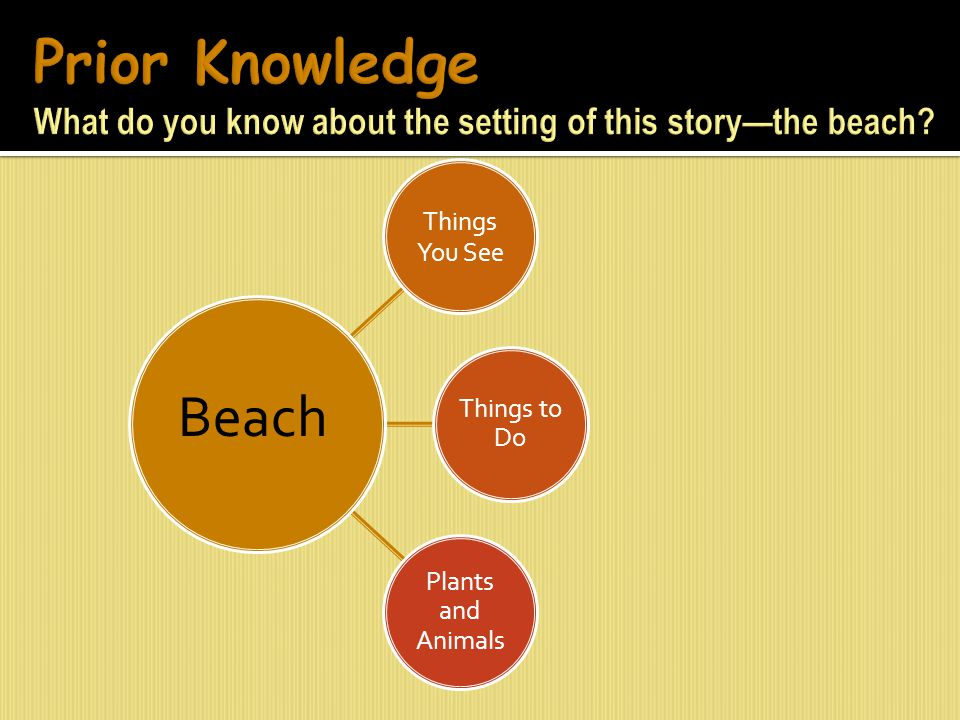 Prior Knowledge What do you know about the setting of this story—the beach