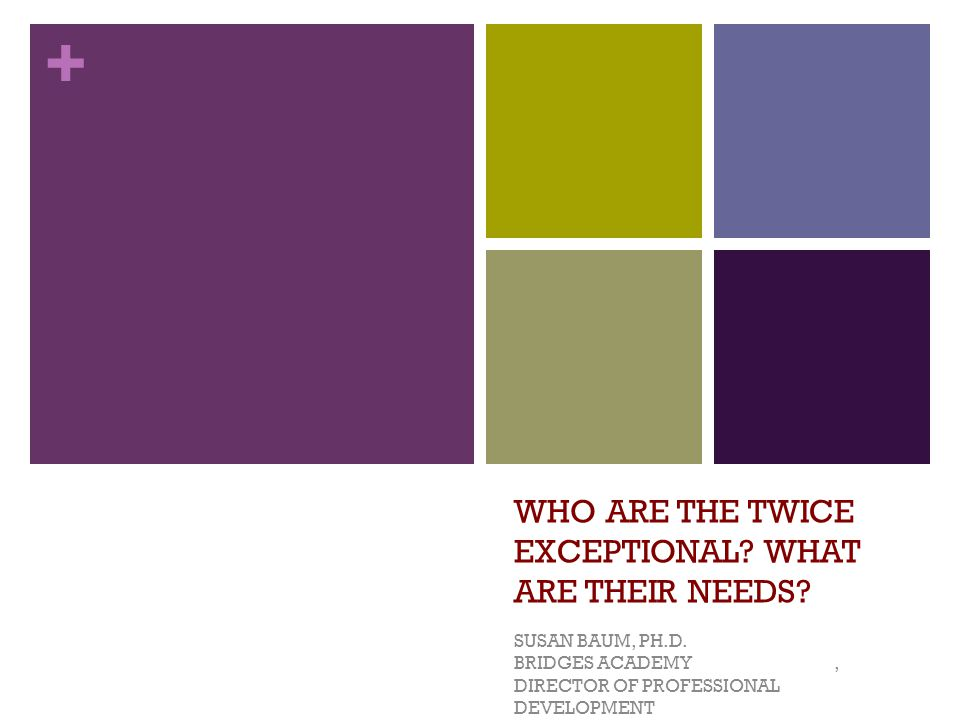WHO ARE THE TWICE EXCEPTIONAL WHAT ARE THEIR NEEDS