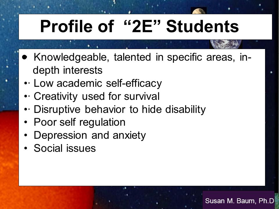 Profile of 2E Students