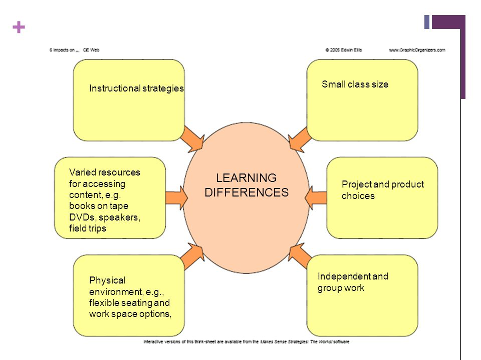 LEARNING DIFFERENCES Small class size Instructional strategies
