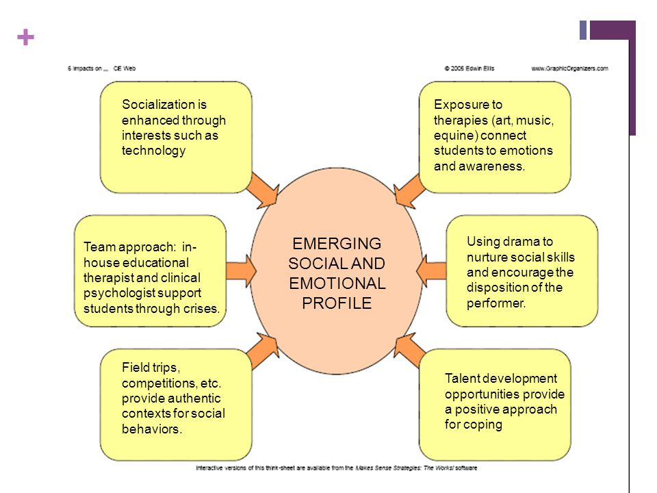 EMERGING SOCIAL AND EMOTIONAL PROFILE