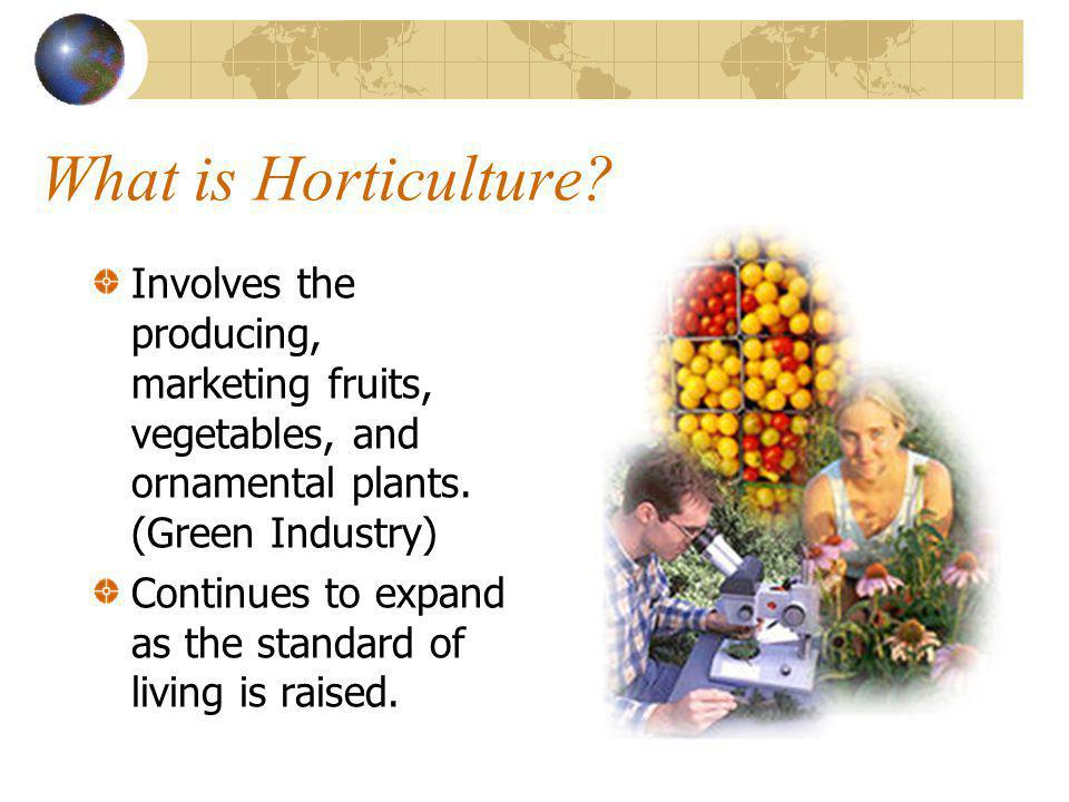 What is Horticulture Involves the producing, marketing fruits, vegetables, and ornamental plants. (Green Industry)