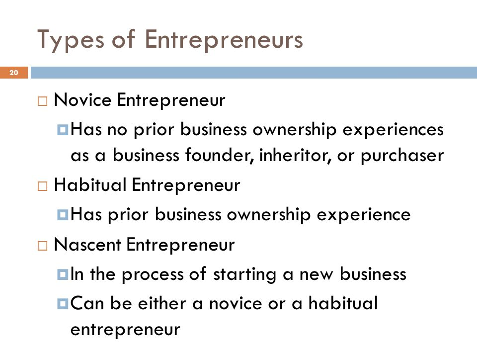 Types of Entrepreneurs