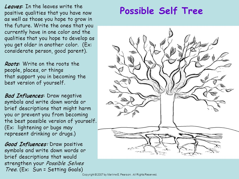 Leaves: In the leaves write the positive qualities that you have now as well as those you hope to grow in the future. Write the ones that you currently have in one color and the qualities that you hope to develop as you get older in another color. (Ex: considerate person, good parent).
