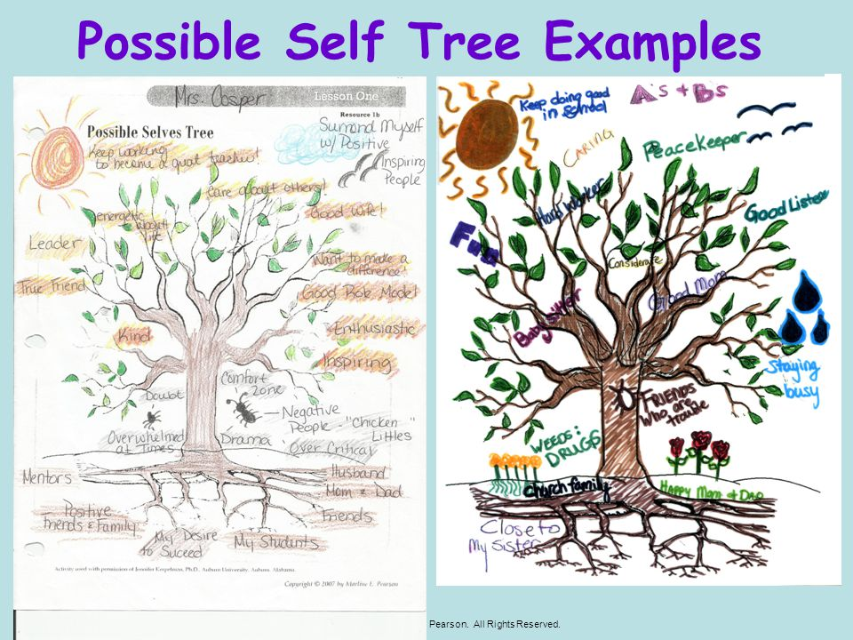 Possible Self Tree Examples