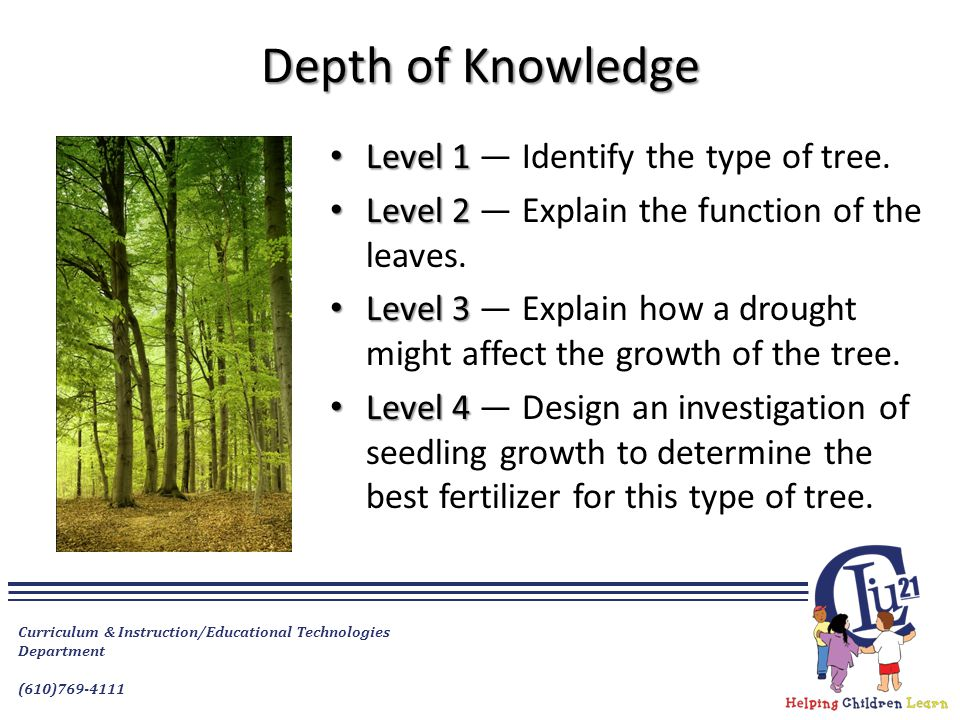 Depth of Knowledge Level 1 — Identify the type of tree.