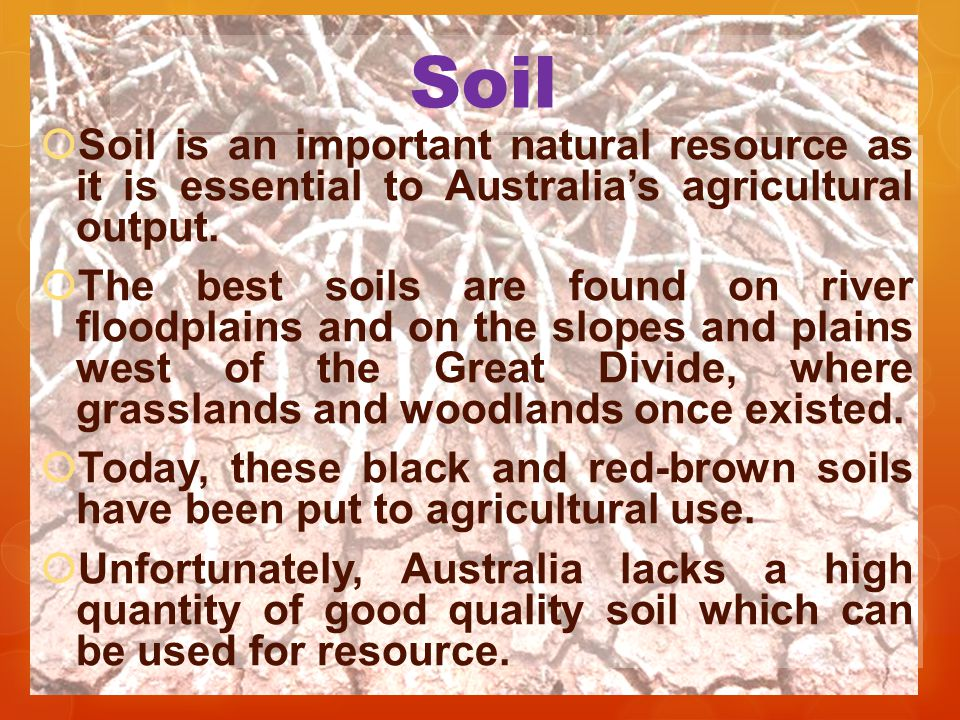 Soil Soil is an important natural resource as it is essential to Australia's agricultural output.