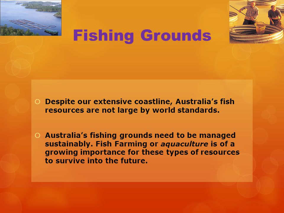 Fishing Grounds Despite our extensive coastline, Australia's fish resources are not large by world standards.
