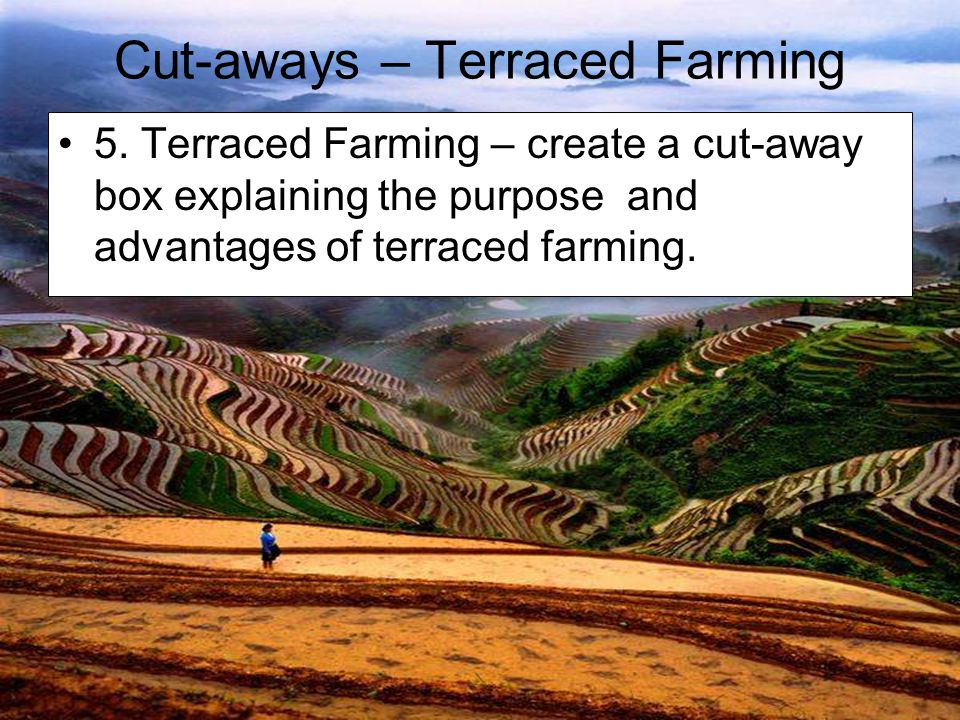 Cut-aways – Terraced Farming