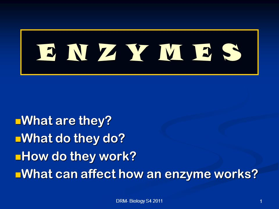E N Z Y M E S What are they What do they do How do they work