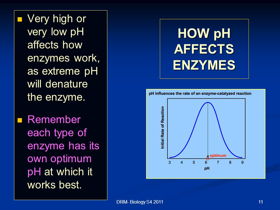 Very high or very low pH affects how enzymes work, as extreme pH will denature the enzyme.