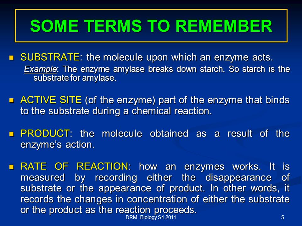 SOME TERMS TO REMEMBER SUBSTRATE: the molecule upon which an enzyme acts.