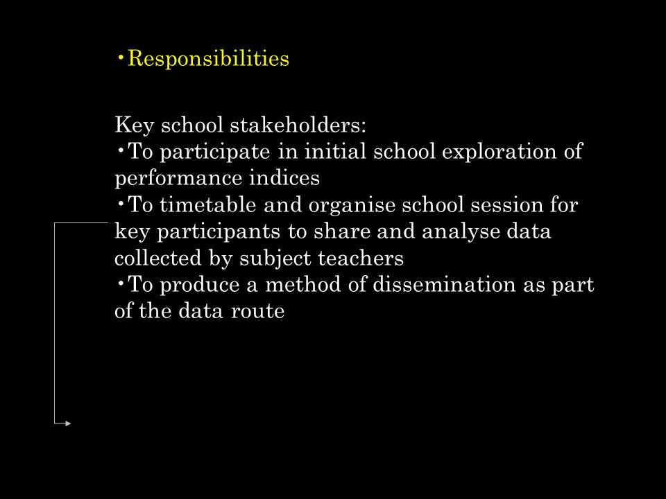 Responsibilities Key school stakeholders: To participate in initial school exploration of performance indices.