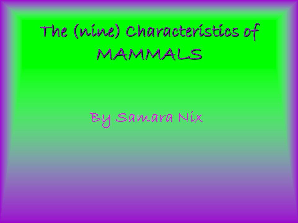 The (nine) Characteristics of MAMMALS