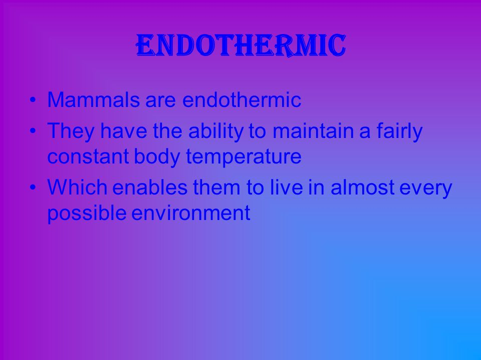 Endothermic Mammals are endothermic
