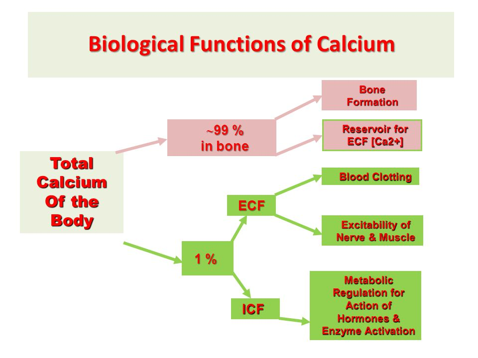Biological Functions of Calcium