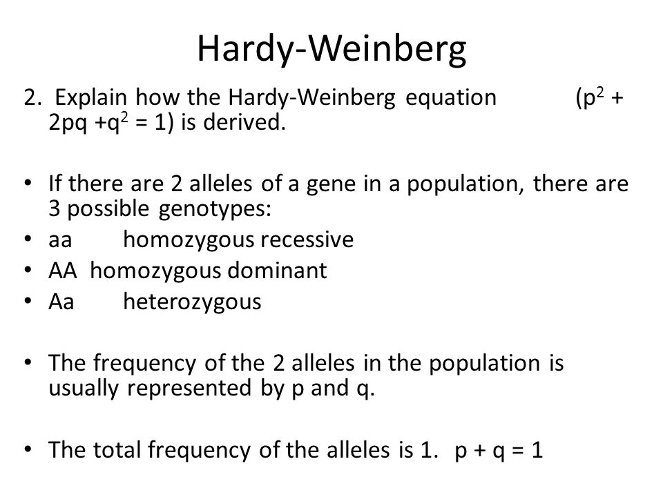 Hardy-Weinberg 2. Explain how the Hardy-Weinberg equation (p2 + 2pq +q2 = 1) is derived.